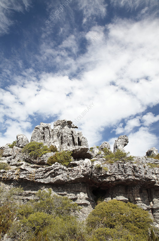 Table Mountain sandstone, South Africa
