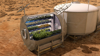 Plant growth chamber on Mars