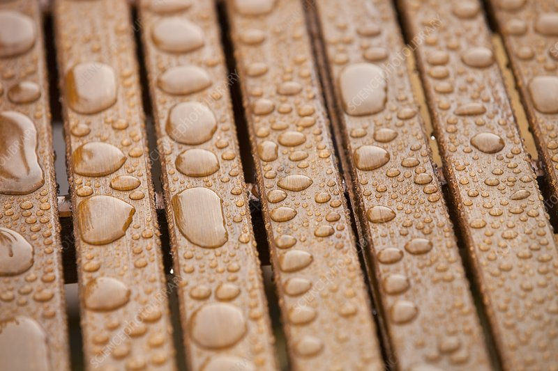 Rainwater on an outdoor table