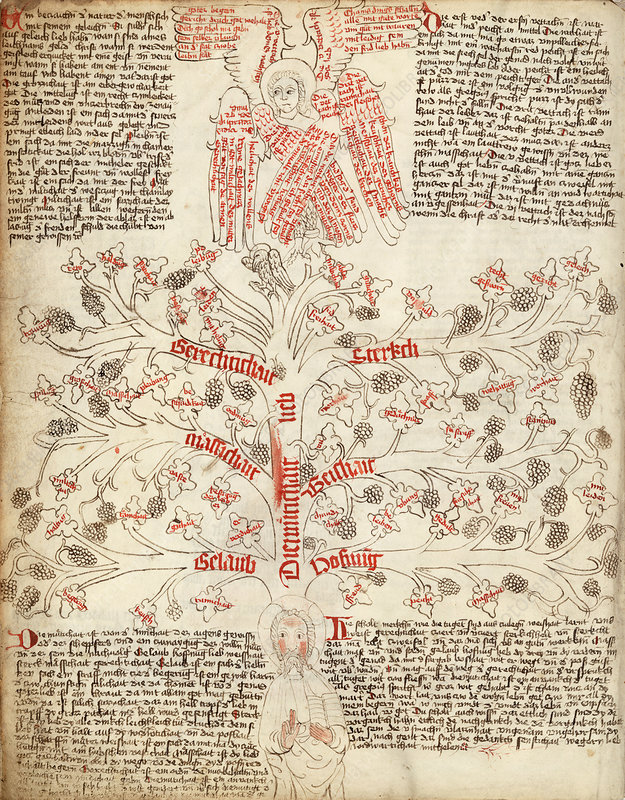 Tree of life allegory, 15th century