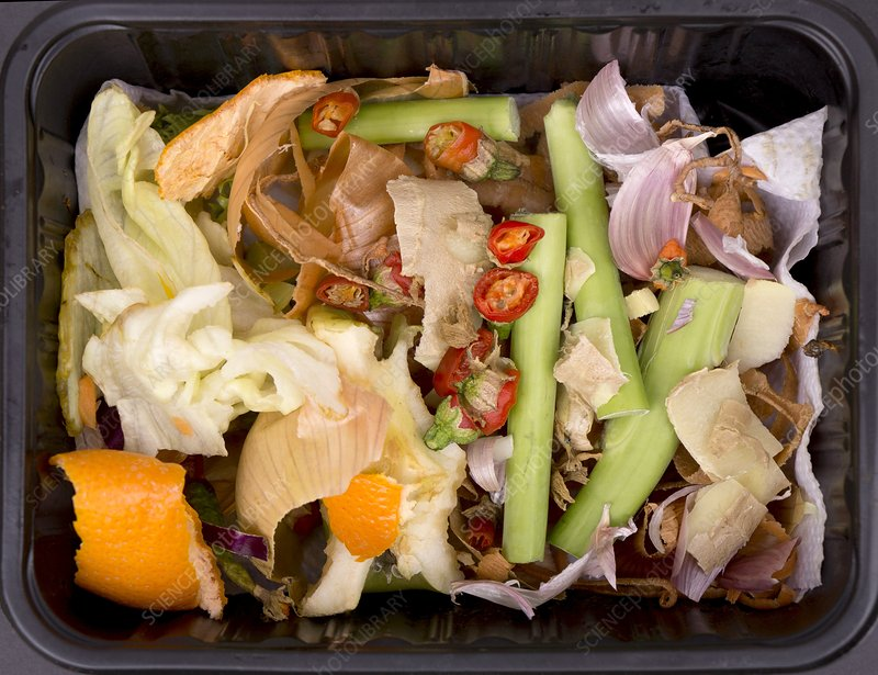 Composting Kitchen Waste