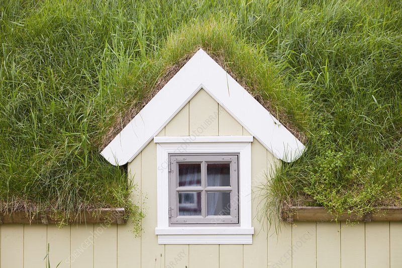 Green roofed house, Iceland