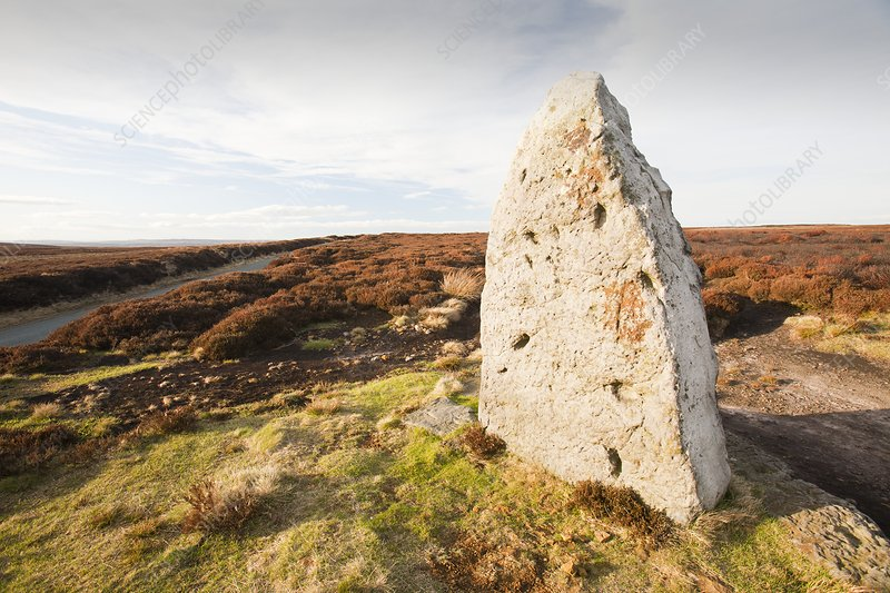Ancient standing stone, Danby Moor, UK