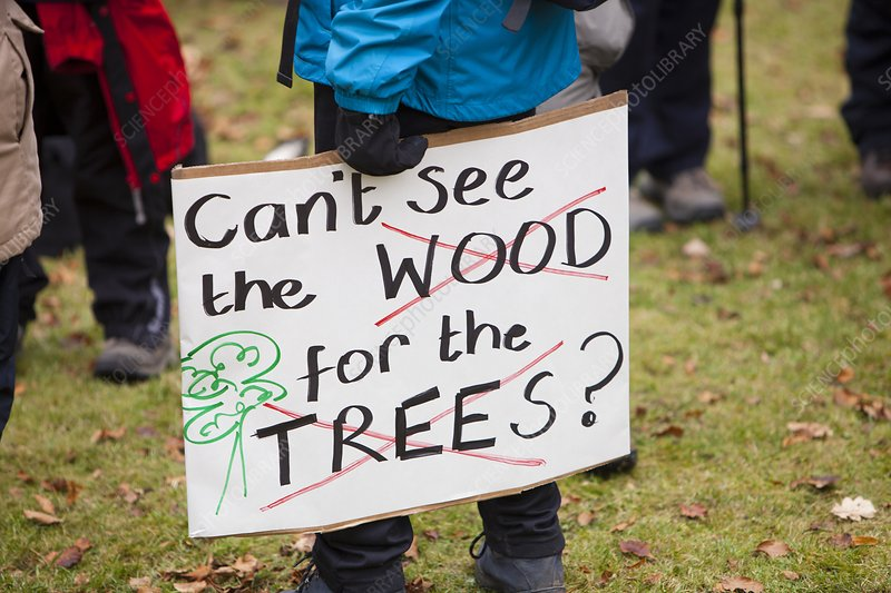 Protest against public forest selloff, UK