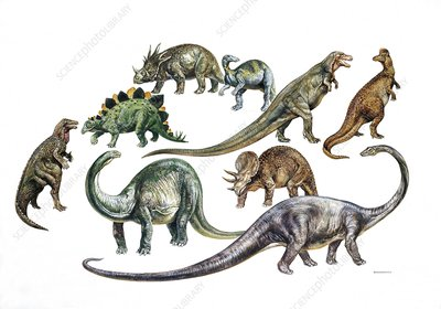 Dinosaurs, illustration