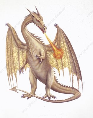 Dragon, illustration