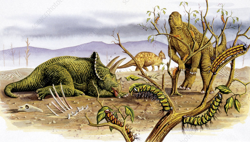 Herbivorous dinosaurs, illustration
