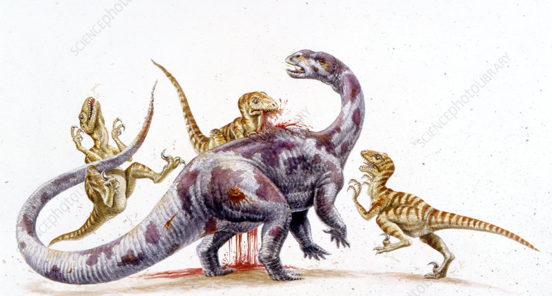 Deinonychus attacking Tenontosaurus