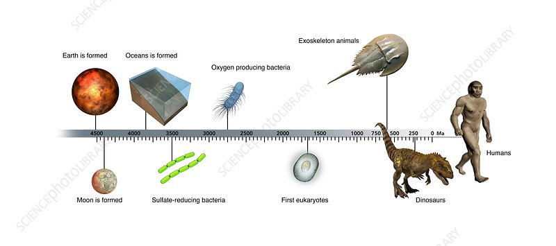 Evolution of Earth timeline, illustration