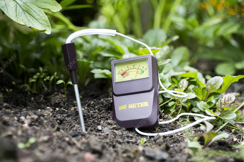 Soil ph meter stock image c026 6564 science photo library for Soil library