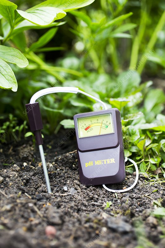 Soil ph meter stock image c026 6565 science photo library for Soil library