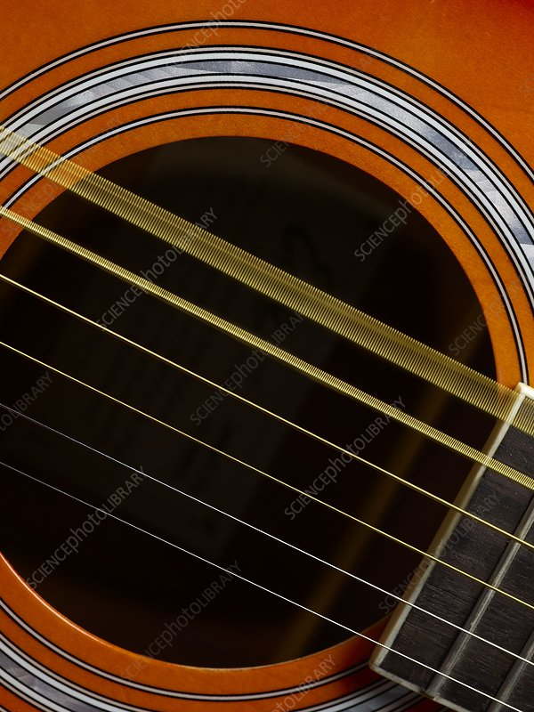guitar strings vibrating stock image c026 6627 science photo library. Black Bedroom Furniture Sets. Home Design Ideas