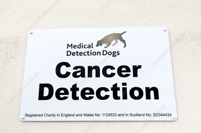 Medical detection dogs sign