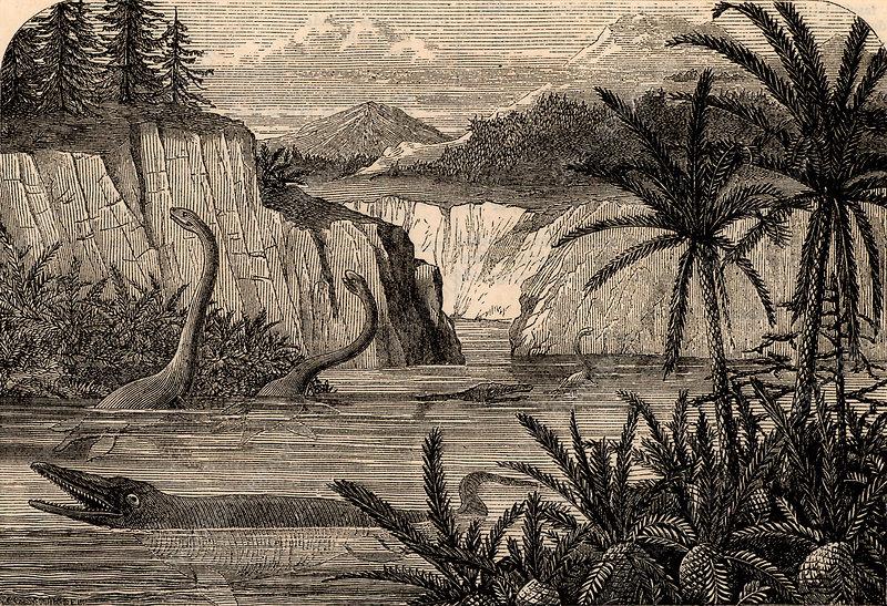 Reconstruction of dinosaurs