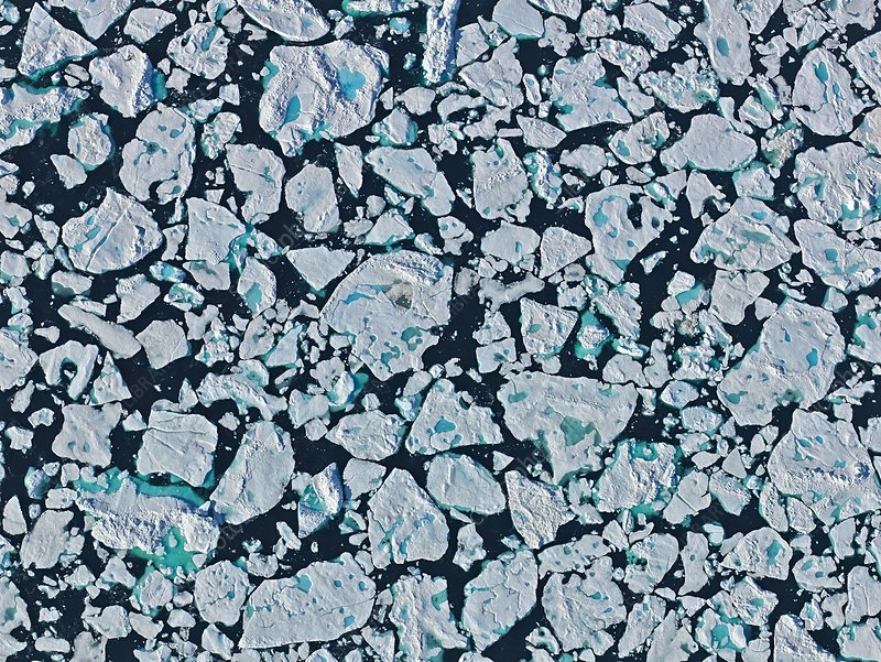 Sea ice floes, Greenland Sea