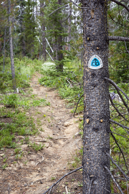 Sign on Continental Divide Trail