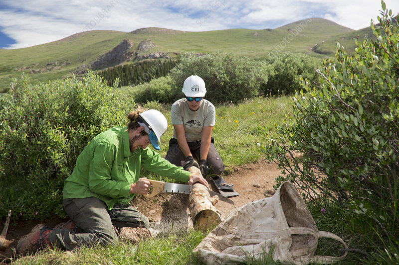 Volunteers maintaining hiking trail