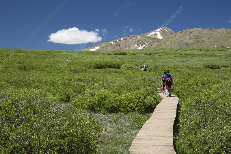 Mount Bierstadt hiking trail