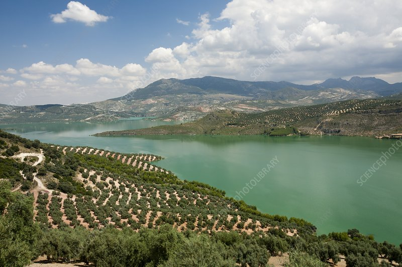 The Iznajar reservoir, Spain