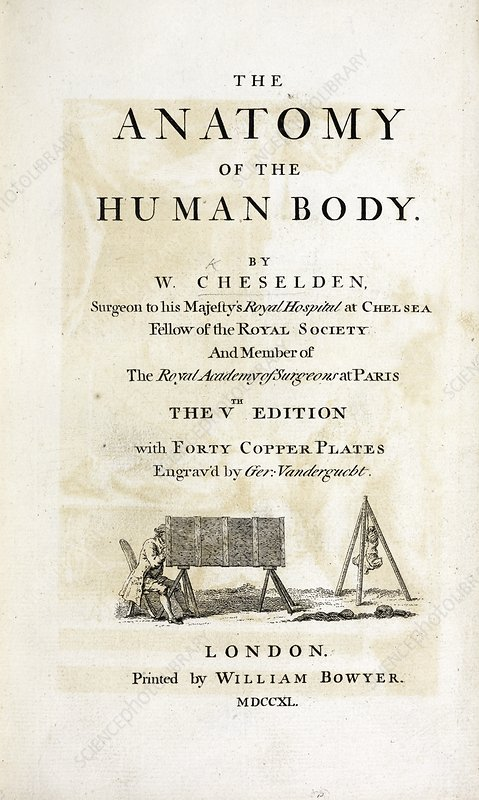 The Anatomy of the Human Body (1740)