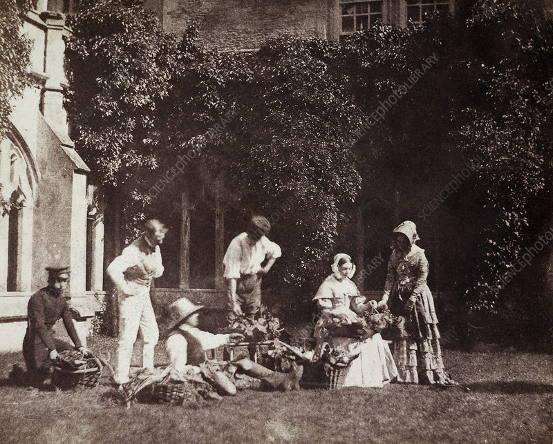 The Fruit Sellers, 1840s calotype print