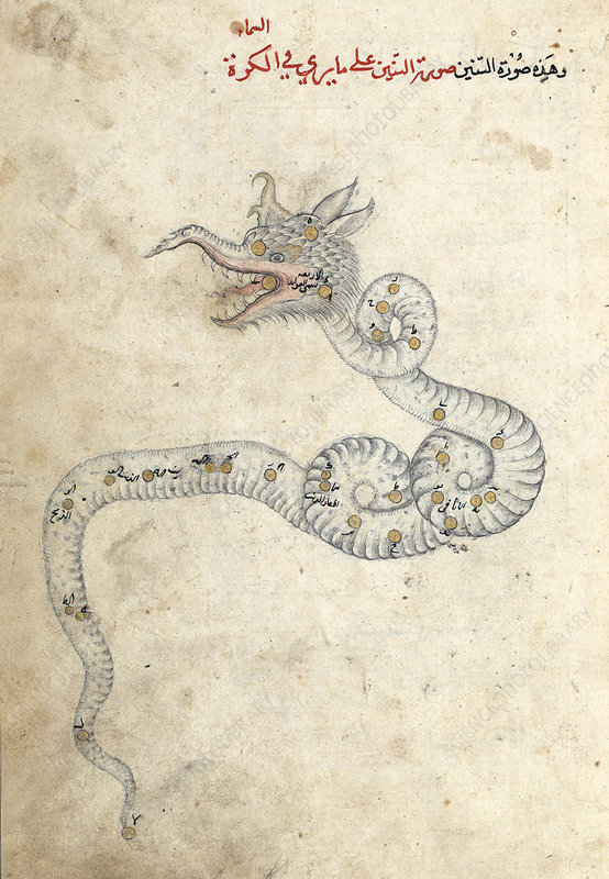Draco constellation, 15th century