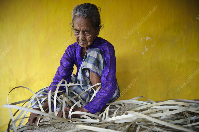 Woman weaving, Indonesia