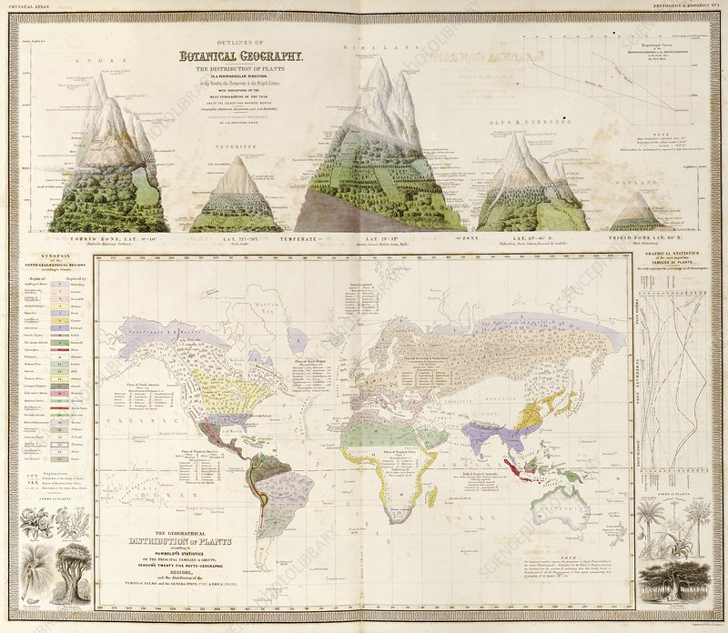 Global botanical geography, 1840s