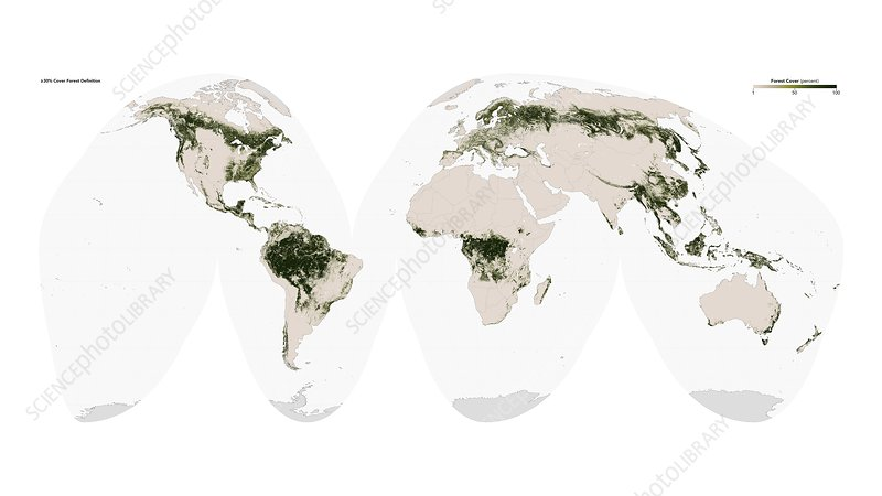 Global forest cover, satellite image