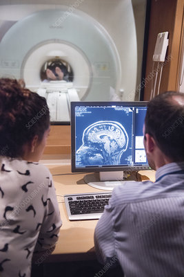 Researchers looking at brain imaging data