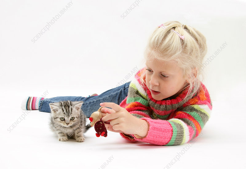 Young Girl with Silver Tabby Kitten