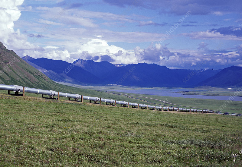 Alaskan Tundra with Pipeline