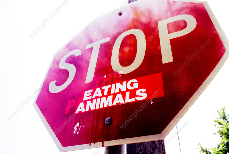 Stop (Eating Animals)