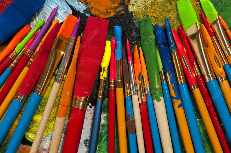 Paintbrushes Lined up on Palette