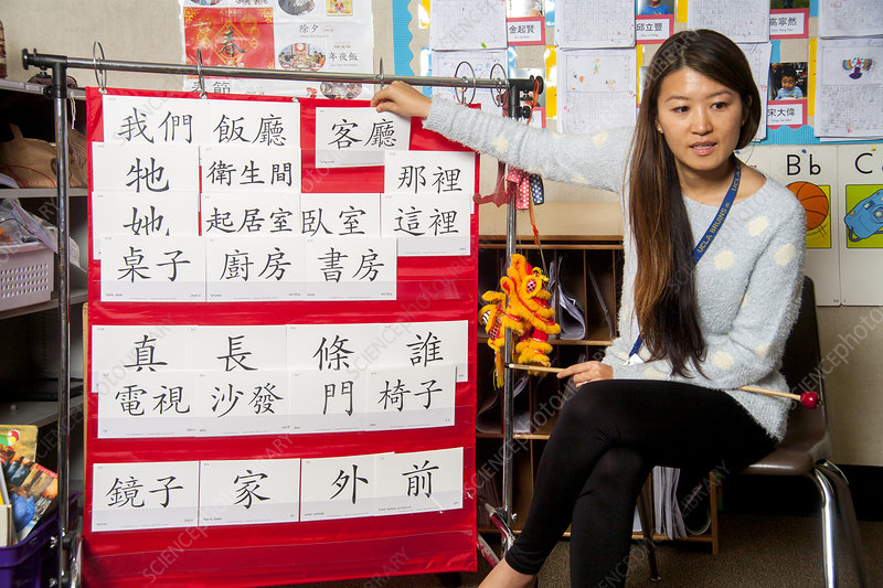 Young Students Learn Mandarin Chinese
