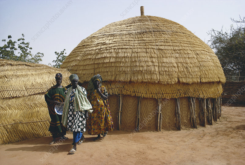 Niger Typical Native House