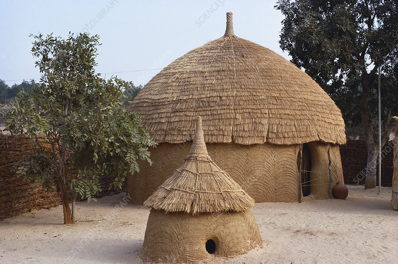 Family in a Hausa Village, Niger