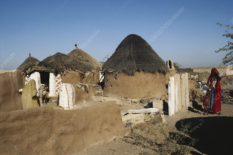Thatch Roofed Mud Houses, India