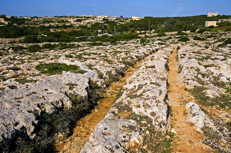 Clapham Junction Cart Ruts, Malta