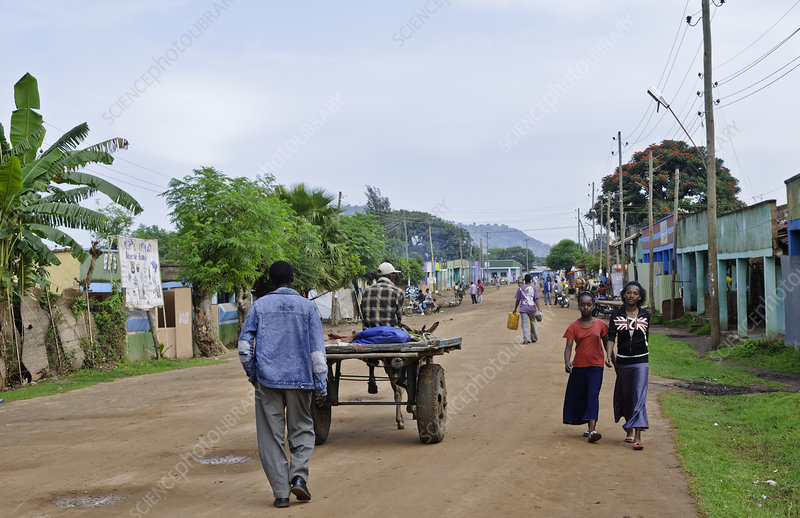 Street Scene in Village, Ethiopia