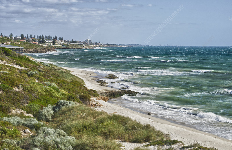 The Shoreline of Perth, Australia