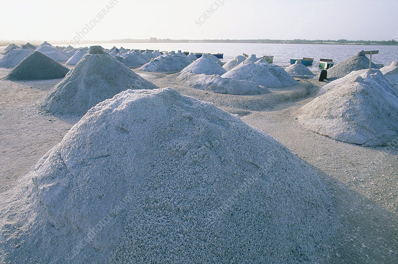 Salt Drying Alongside the Bank, Senegal