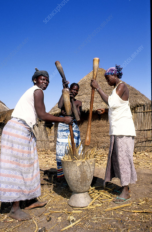 Women Piling Millet Grains, Senegal