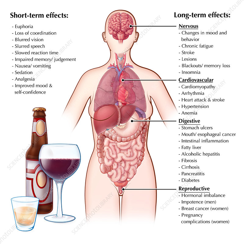 Effects of Alcohol, Illustration