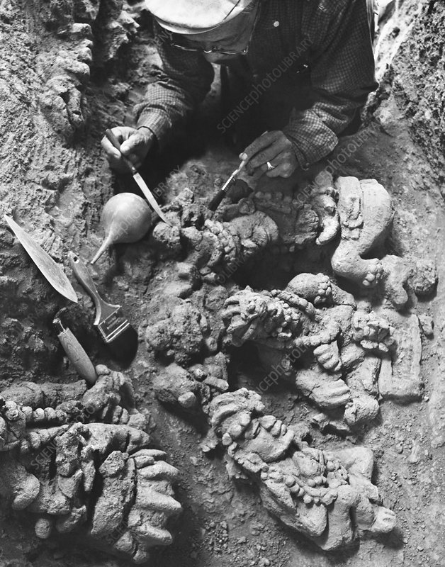 Guatemala Excavation