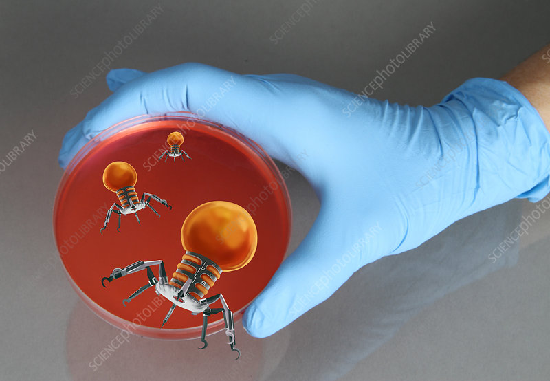 Nanorobots in Medical Research