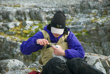 Measuring Petrel Chick