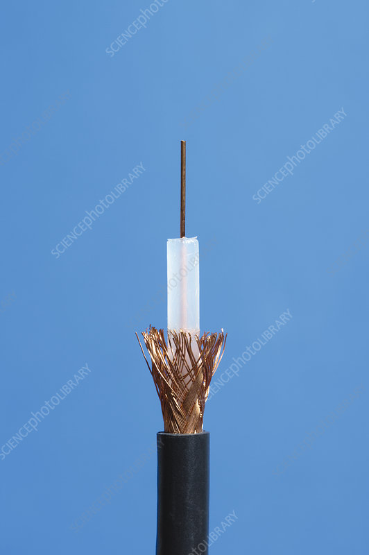 Coaxial Cable Inside : Inside of coaxial cable stock image c  science