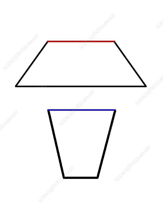 Trapezoid Optical Illusion, illustration