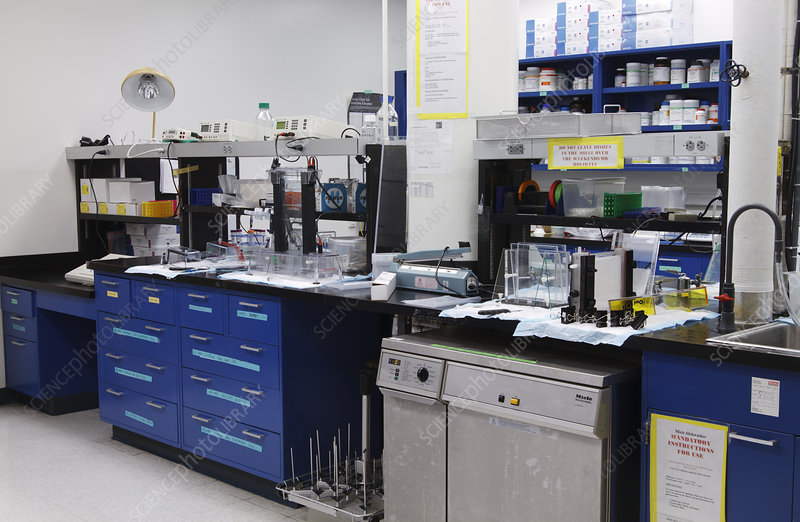 Cell Biology Laboratory